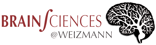 Brain Science at Weizmannn